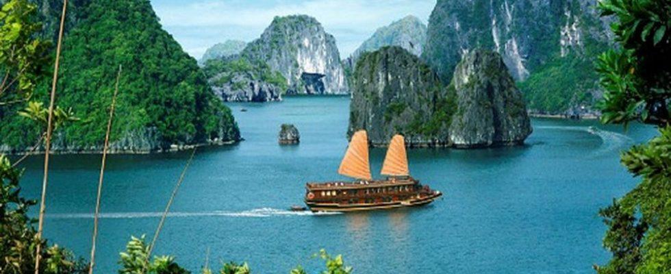 Ngành du lịch nên học trường nào ở TPHCM là tốt nhất?